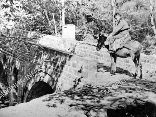 До столицы Афона солдаты добрались верхом на ослах