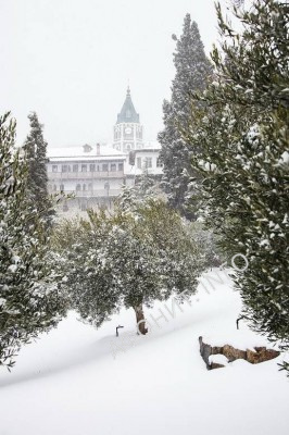 Пантелеимонов монастырь на Афоне в снегу