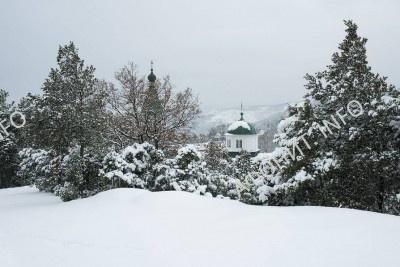 Старый Русик в снегу