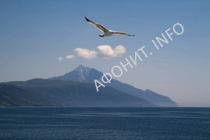 Святая Гора Афон Паломничество