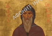 prp.Antonij3